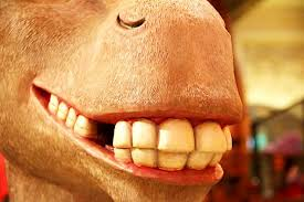 DonkeySmiler